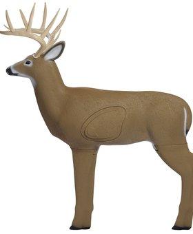 SHOOTER Shooter Buck