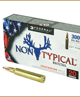 Federal 300 Win Mag 180 gr NonTyp