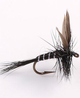 etic Unsnelled Dry Flies Black Gnat #12
