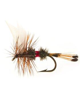 etic Unsnelled Dry Flies Royal Coachman #12