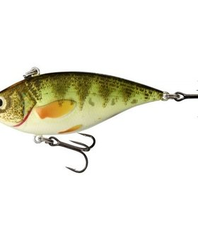 Live Target Yellow Perch YPR70SK222
