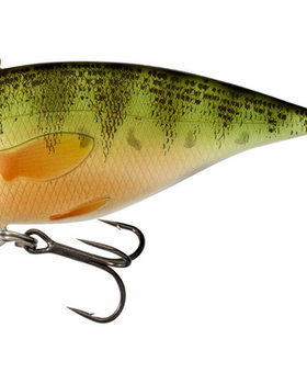 Live Target YELLOW PERCH YPR50SK102