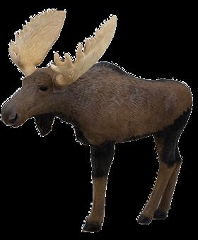 RINEHART 1/3 Scale Woodland Moose
