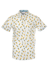 Report Collection Report - Pineapples -S/S-2820441R