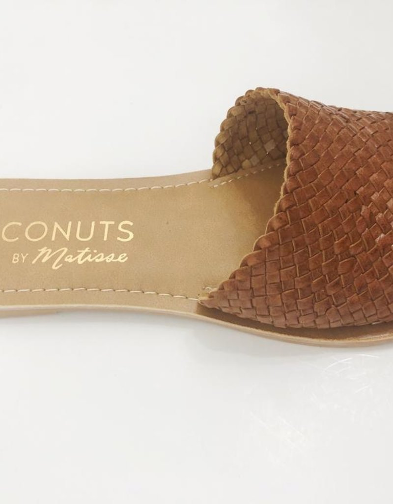 Coconuts Coconuts by Matisse Zuma Slide