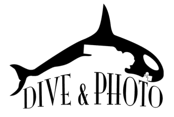 Dive And Photo