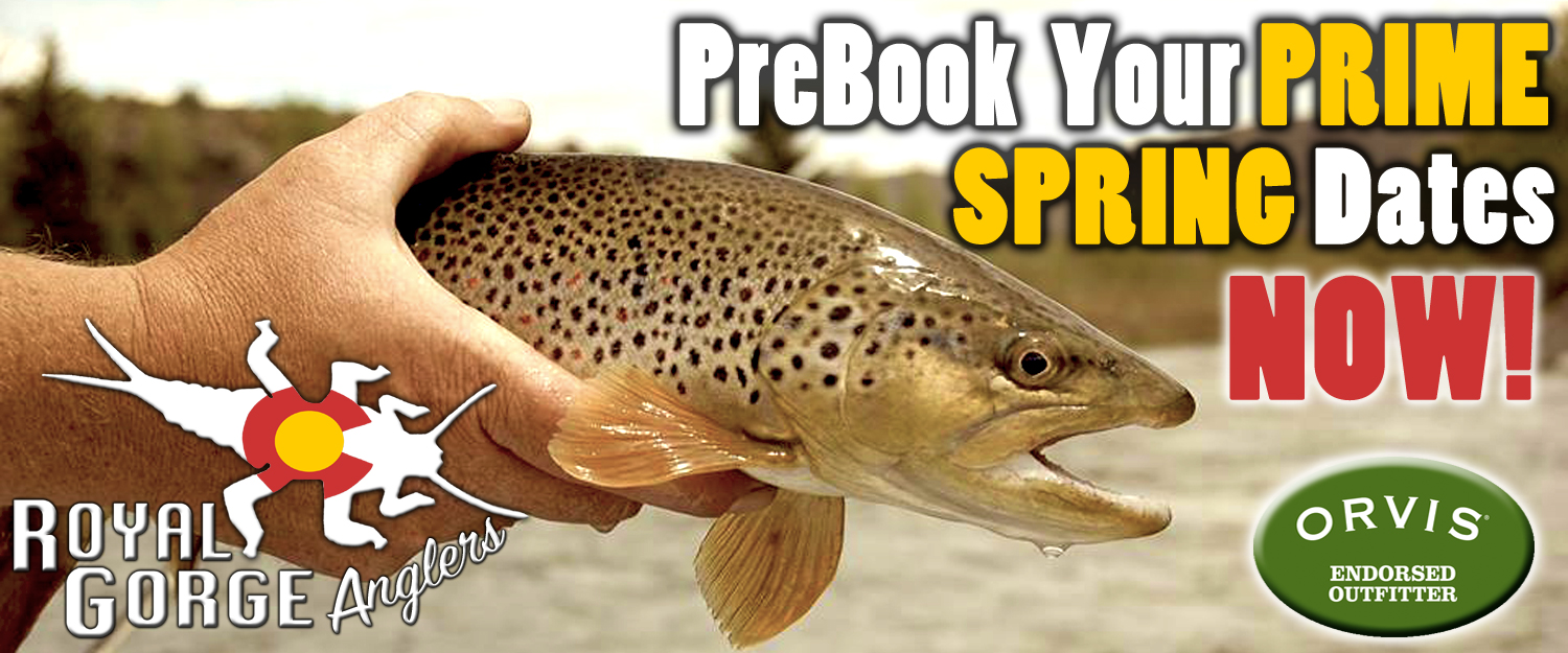Book Spring Fly Fishing Guides