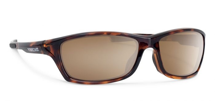 Forecast Optics Chet Tortoise/Brown