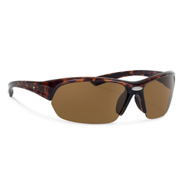 Forecast Optics Thad Tortoise/Brown