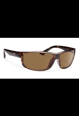 Forecast Optics Eli Tortoise/Brown