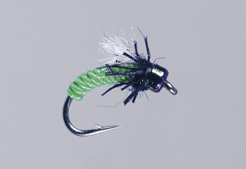 MFC Galloup's Shop Dip Caddis Pupa (3 Pack)