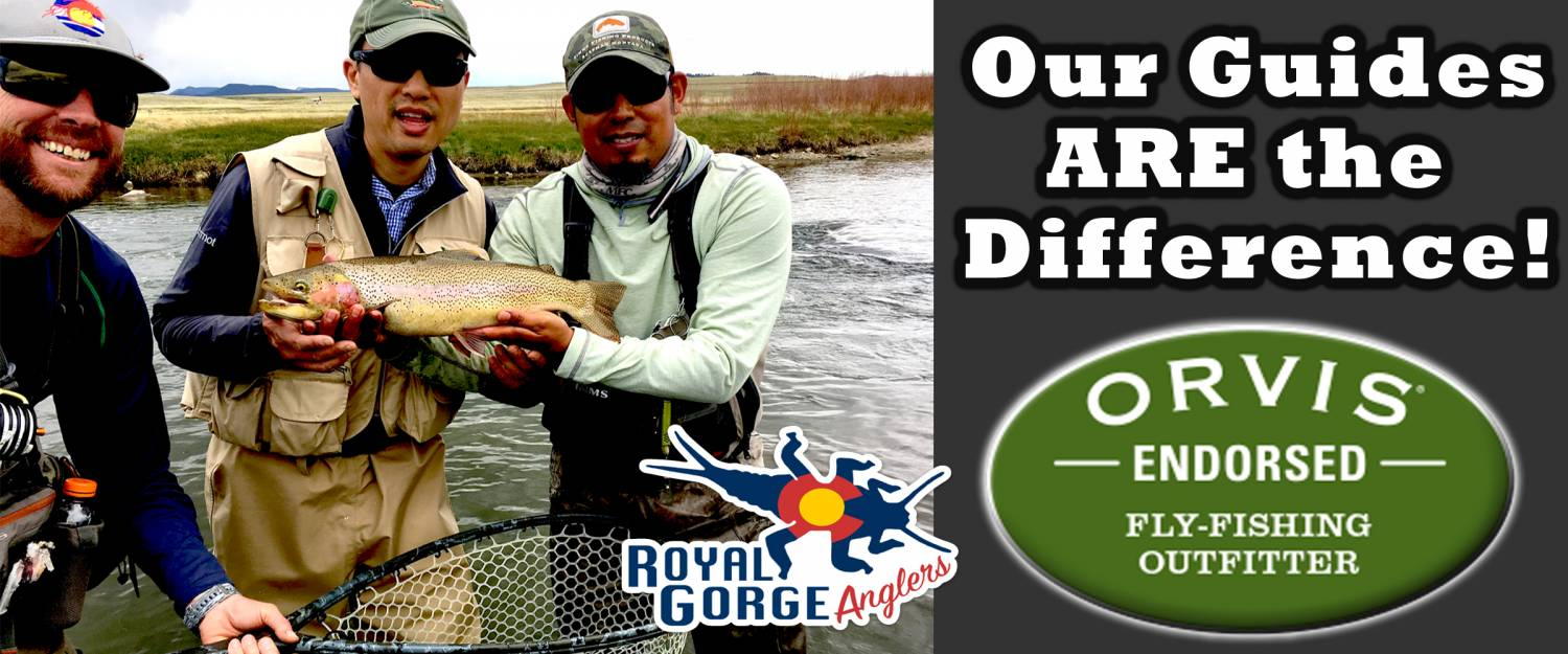 Arkansas River Fly Fishing Guide