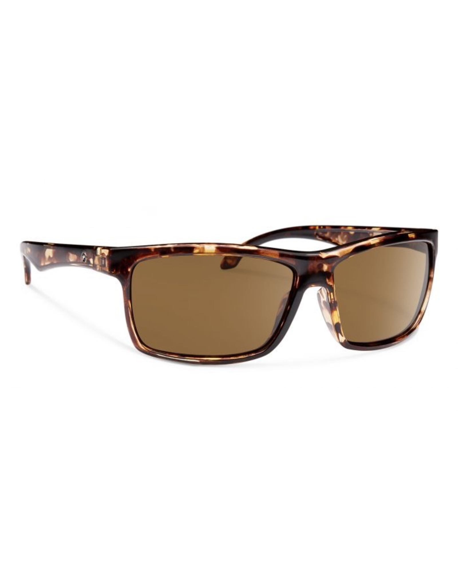 Forecast Optics Ajay Matte Tortoise/Brown Polarized