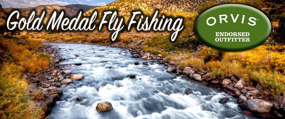 Fly Fish Gold Medal