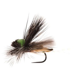 Mother Superior Caddis (3 Pack)