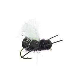 Point Guard Beetle (3 Pack) Black, Yaeger