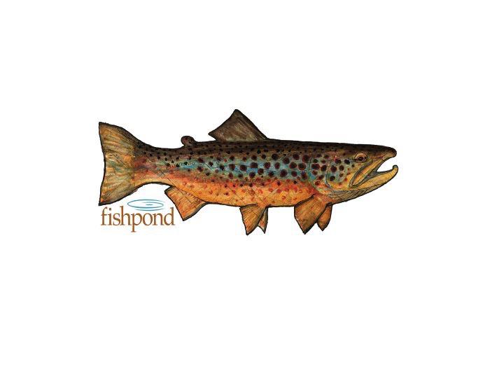 Fishpond Local Sticker