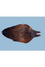 #1 Hen Neck Furnace