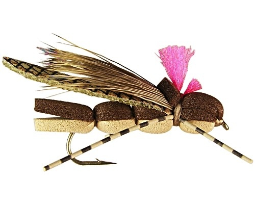 Juan's Lil' Hopper Tan 14 (3 Pack)
