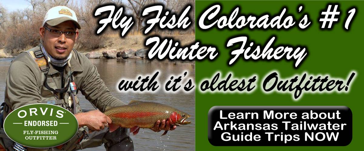 Arkansas Tailwater Fly Fishing