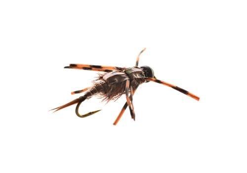 Super Buggy Stonefly!