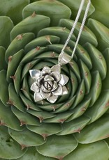 Justine Brooks Succulents