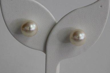 14kw 11mm Akoya Pearl Earrings