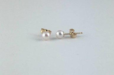 14k Yellow Gold Akoya Pearl Stud Earrings