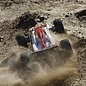 TLR / Team Losi LOS01000  Losi Mini 8IGHT-T 1/14 Scale 4WD Electric Brushless Truggy RTR