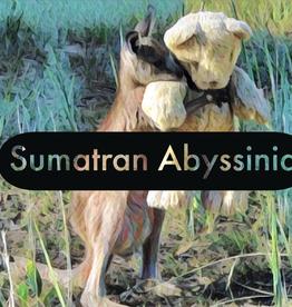 Coffee Sumatran Abyssinia Whole Bean 1 Lb Coffee