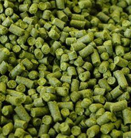 Chinook Hop Pellets 1 oz.