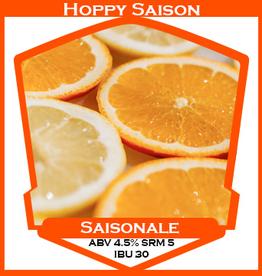Saisonale Hoppy Saison **ALL GRAIN**