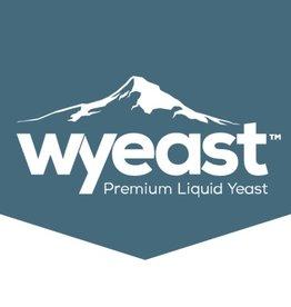 WY4184 Sweet Mead