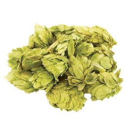 Citra Whole Leaf Hops 1oz
