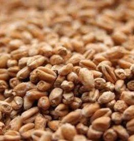 Best Malz Pale Wheat Malt