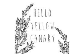Hello Yellow Canary