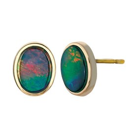 Nikita Ammolite Yellow Gold Earrings