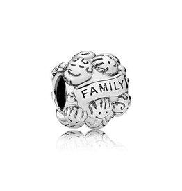 Pandora 791039 - Family