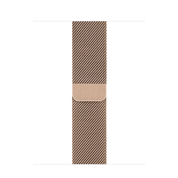 Apple Apple Watch 40mm Gold Milanese Loop