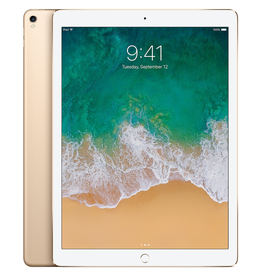 Apple Apple 12.9-inch iPad Pro Wi-Fi 64GB - Gold
