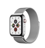 Apple Apple Watch Series 5 GPS + Cellular, 40mm Stainless Steel Case with Stainless Steel Milanese Loop
