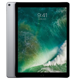 Apple Apple 12.9-inch iPad Pro Wi-Fi 64GB - Space Gray - Open Box