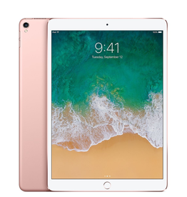 Apple Apple 10.5-inch iPad Pro Wi-Fi 512GB - Rose Gold