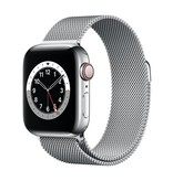 Apple Series 6 GPS + Cellular, 44mm Silver Stainless Steel Case with Silver Milanese Loop