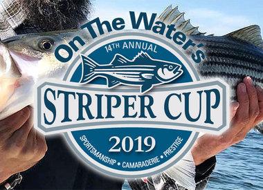 Striper Cup