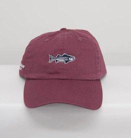Striper Newport Mid Fit Hat