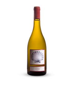 Il Borro Lamelle Chardonnay