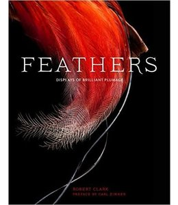 Chronicle Books Feathers