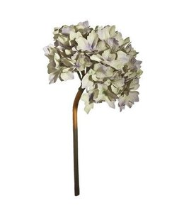 A & B Home Hydrangea Stem - Smokey White