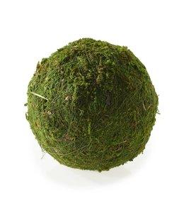 "Moss Sphere - 4"""